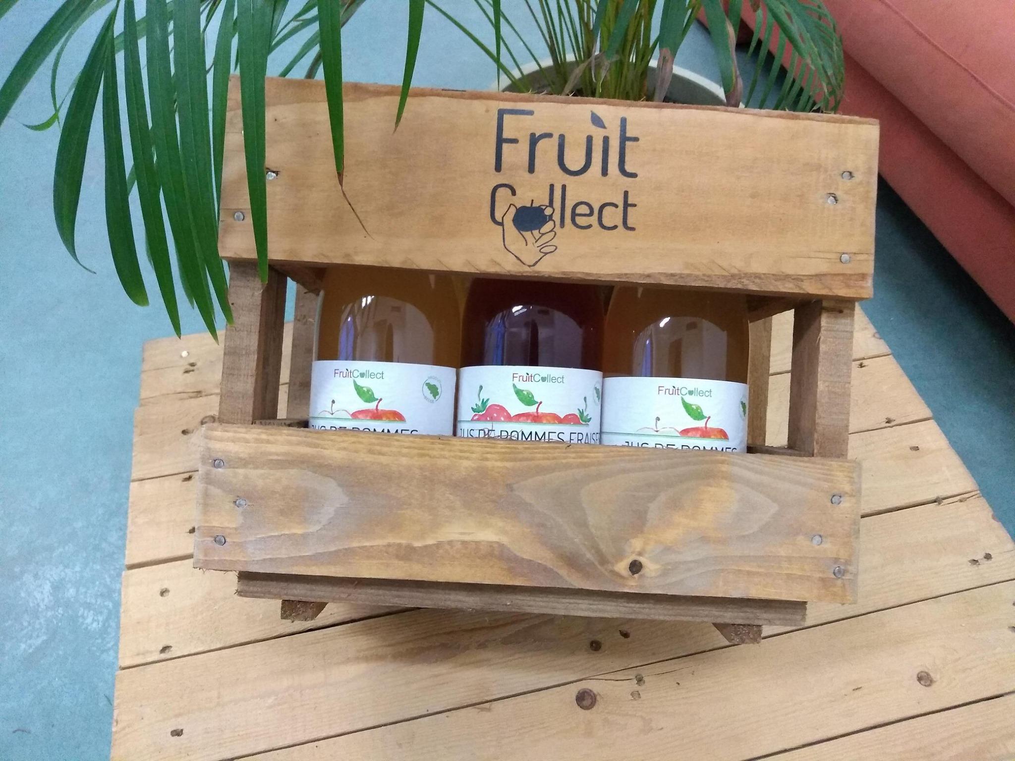 Meet My Job x Fruit Collect