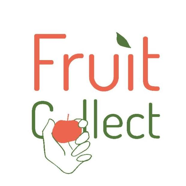 Fruit Collect - Logo